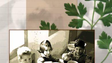 Photo of ספר מתכונים | מרקים