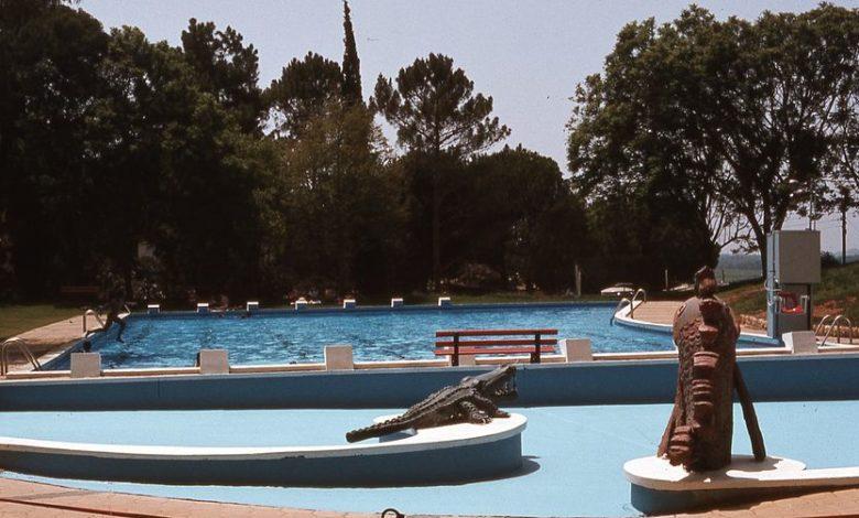 Photo of הבריכה נפתחה והקיץ מגיע!