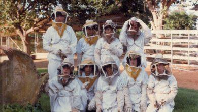 Photo of קבוצת אגוז 1